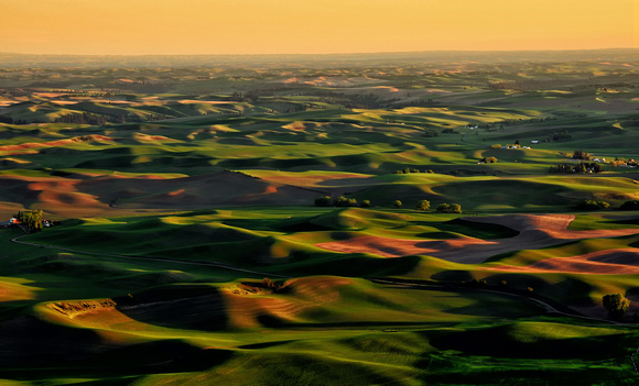 Palouse Rolling Hills Washington 0256