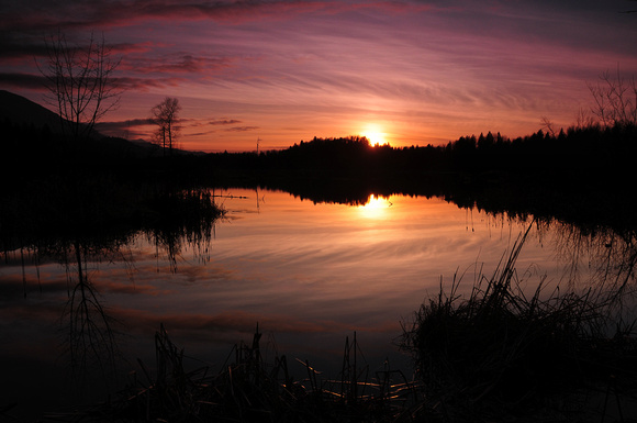 Wetlands Sunset 8065 British Columbia
